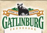 Gatlingburg, TN